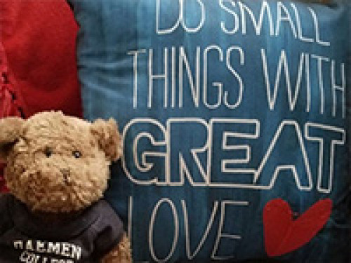 Do Small Things with Great Love on Pillow, Teddy Bear wearing a Daemen shirt